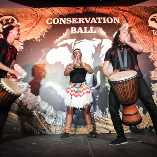 Conservation Ball 2018_016