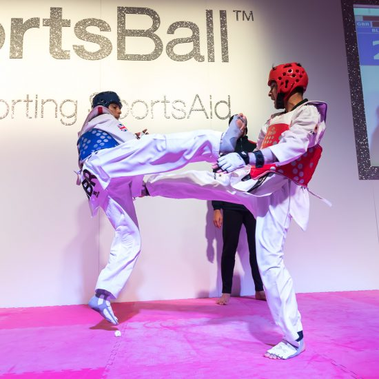 Sportsaid's Sportsball 2017_018