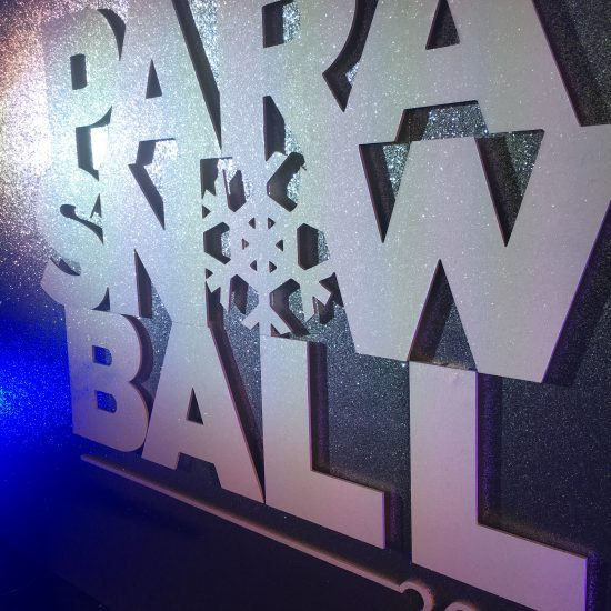 Parasnowball 2017_001