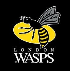 london-wasps
